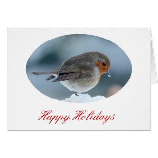 Robin im Schnee Karte