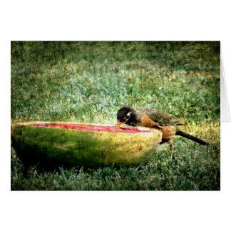 Robin isst Wassermelone Karte