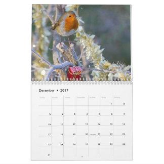 Robin-Kalender 2017 Abreißkalender
