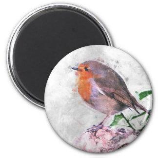 Robin Redbreast Runder Magnet 5,7 Cm
