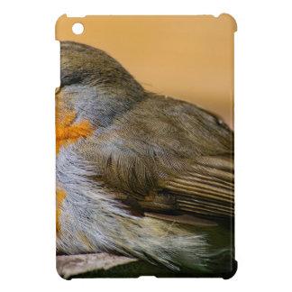 Robin-Rot-Brust iPad Mini Hülle