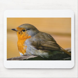 Robin-Rot-Brust Mousepad