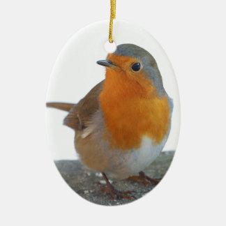 Robin-Rot-Brust Ovales Keramik Ornament