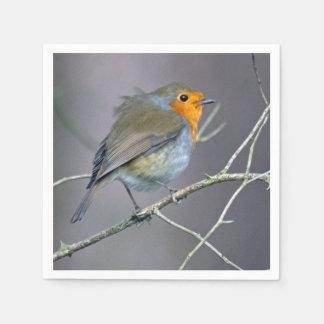 Robin-Servietten Servietten