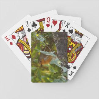 Robin Spielkarten