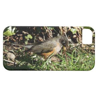 Robin-Vogel-Tier-Tier-Fotografie Hülle Fürs iPhone 5