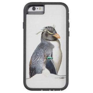 Rockhopper Pinguin iPhone 6 Fall Tough Xtreme iPhone 6 Hülle