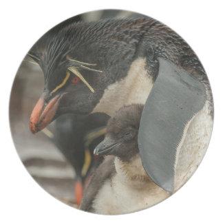 Rockhopper Pinguin und Küken Melaminteller