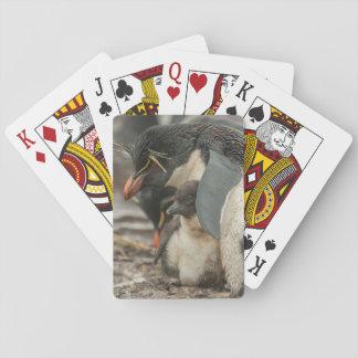 Rockhopper Pinguin und Küken Spielkarten
