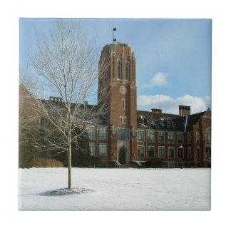 Rockwell im Winter an der Waldungs-Stadt-Uni Fliese