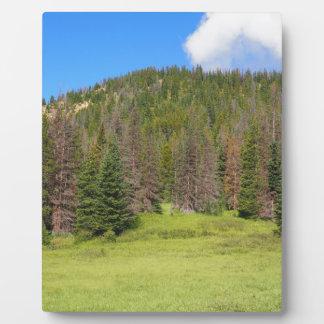 Rocky Mountain Nationalpark Fotoplatte