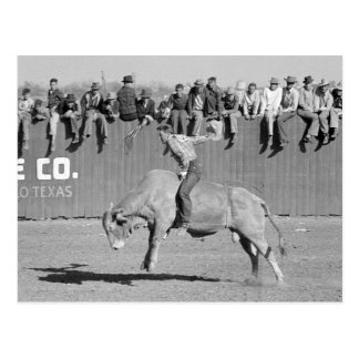 Rodeo Stier Rider, 1940 Postkarte