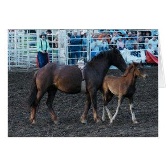 Rodeo-Stute und Fohlen Karte