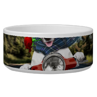 Rollerhund, Jack Russell Napf