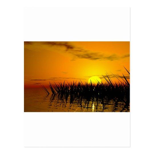 Romantic seashore postkarte