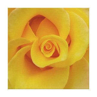 Romantische gelbe Rosen-Blumenblätter Leinwanddruck