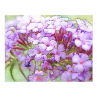 Romantische lila Schmetterlings-Bush-Blumen Postkarte