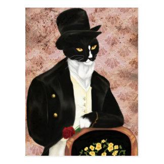 Romantische Postkarte Herrn Darcy Cat