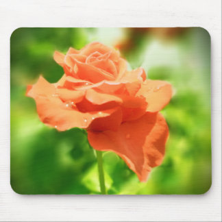 Romantische Rosen-Blumen #2 Mousepad