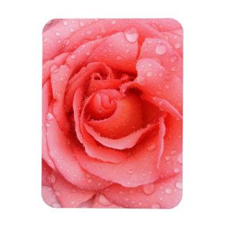Romantische rote rosa Rosen-Wasser-Tropfen Magnet