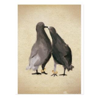 Romantische Tauben Postkarte