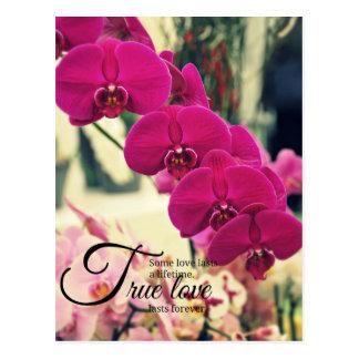 Romantisches Inspirationszitat Postkarte