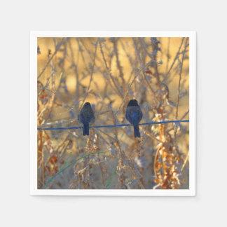 Romantisches Spatzenvogel-Paar-Foto, Cocktail Serviette
