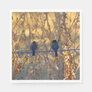 Romantisches Spatzenvogel-Paar-Foto, Mittagessen Serviette