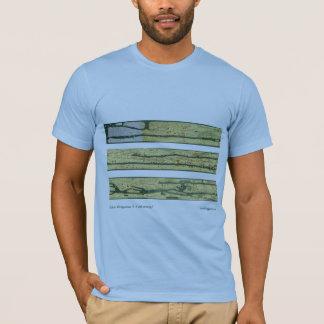 Römische Straßenkarte T-Shirt