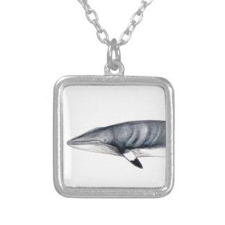 Rorcual aliblanco Minke whale Halsband, jewellery, Versilberte Kette