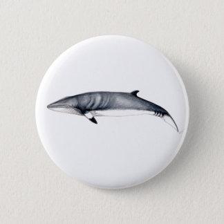 Rorcual aliblanco pins, Brosche, Minke, whale pins Runder Button 5,7 Cm