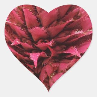 Rosa Aechmea Blumen-Herz-Aufkleber Herz-Aufkleber