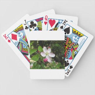 Rosa Apfel-Blume im Frühling. Toskana, Italien Bicycle Spielkarten