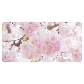 Rosa Baum-Kirschblüte US Nummernschild