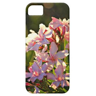 Rosa Blume/BlumenIphone 5 Fall iPhone 5 Hüllen
