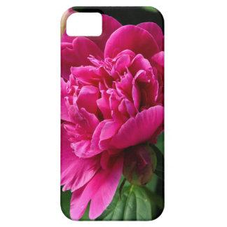 Rosa Blume iPhone 5 Etui
