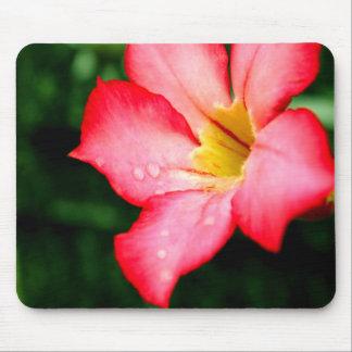 Rosa Blume Mauspad