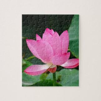 Rosa Blume Puzzle