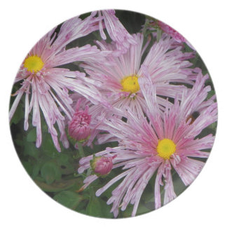 Rosa Blumen-Foto-Geschenk Teller
