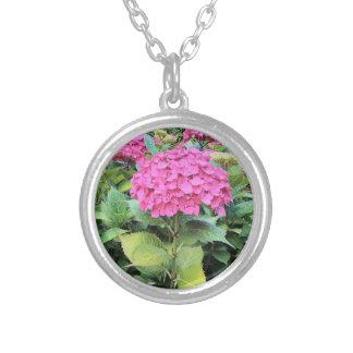 Rosa Blumen-Foto-Silber überzogen ringsum Versilberte Kette