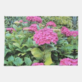 Rosa Blumen-Foto-Tee-Tuch Küchentuch