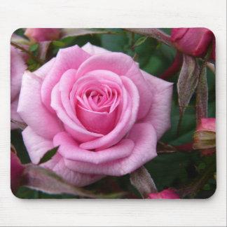 Rosa Blumen Mousepad Rosen-Dekor-Geschenke