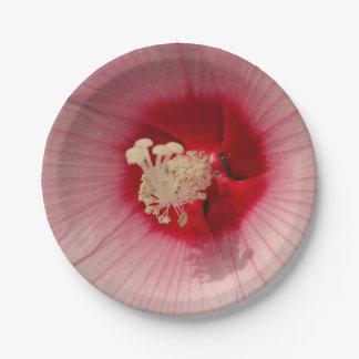 Rosa Blumen-nahes hohes Foto-schöner PapierTeller