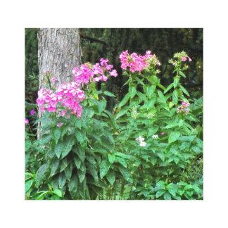 Rosa Blumen und Baum eingewickelte Leinwand