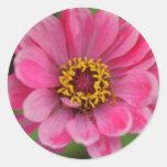 rosa Blumenaufkleber Runde Aufkleber