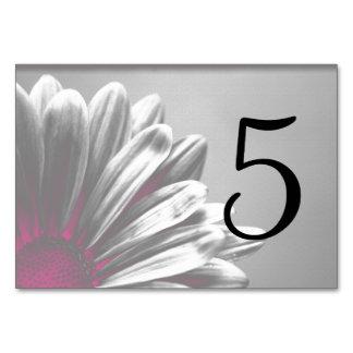 Rosa Blumenhöhepunkt-Tischnummern Karte