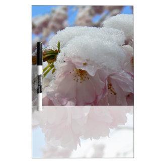Rosa Blüte mit Schnee, Frühling Trockenlöschtafel