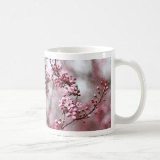 Rosa Blüten im Frühlings-Foto Tee Haferl