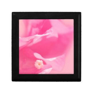 Rosa Bouganvilla-Blätter und Blumen-Nahaufnahme Geschenkbox