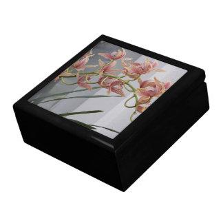 Rosa Cymbidium-Orchideen mit Blumen Erinnerungskiste